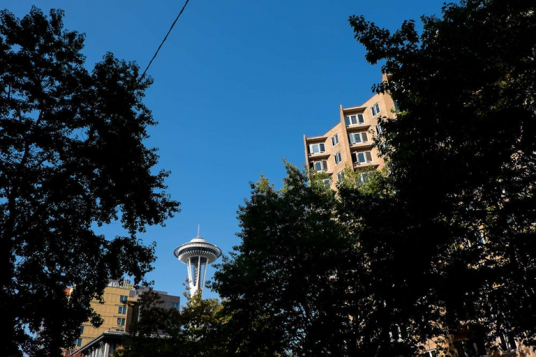 view of the space needle through the trees